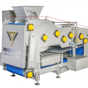 Belt press for fruit, vegetable and berry processing